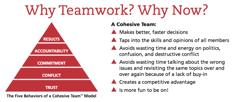 New Team Building Insights